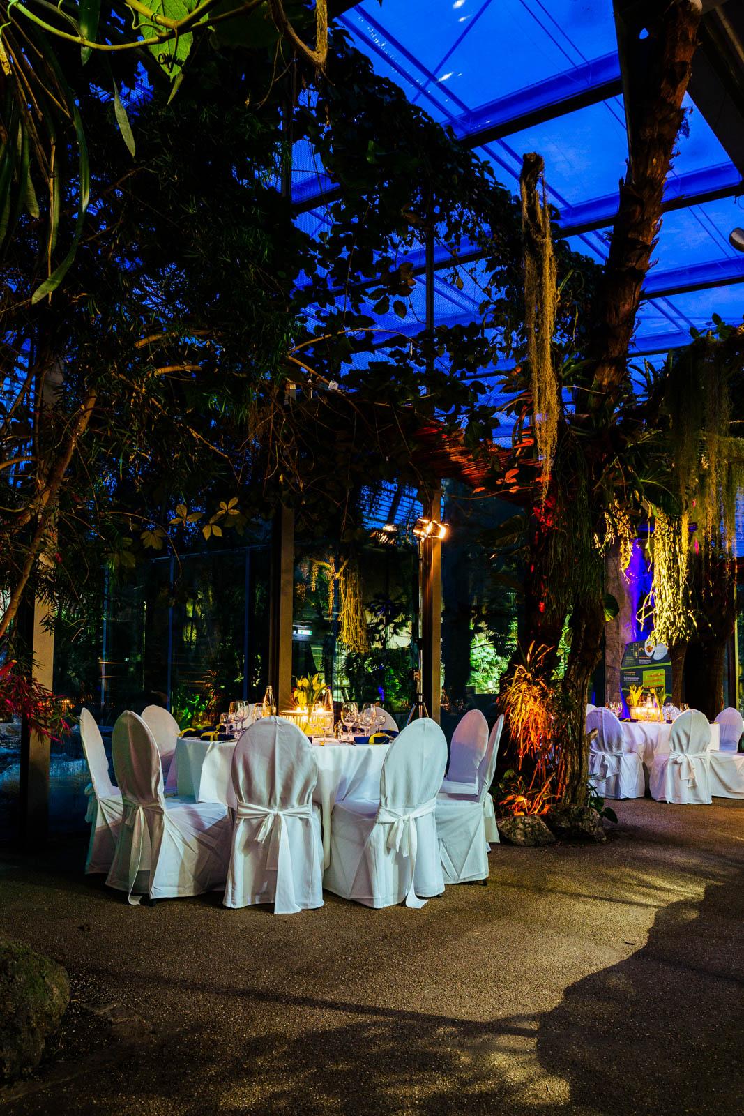 im Tierpark Hellabrunn seine Hochzeit feiern